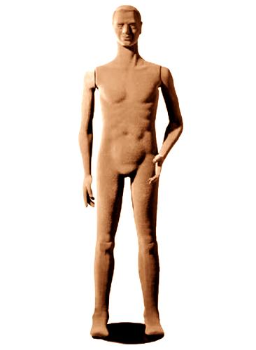 Poly Star Man, pohybovatelná pánska figurína, tělová s vlasy, provedení flock